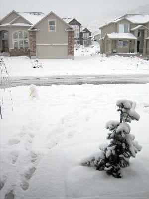 snow on back porch