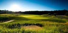 Treetops Golf