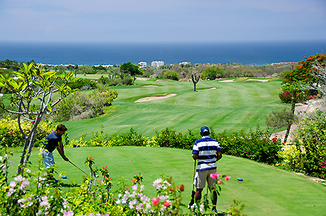 Cabo Real Golf Course - Los Cabos, Mexico