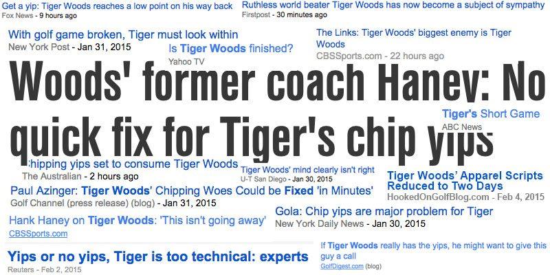 tigeryipsexperts