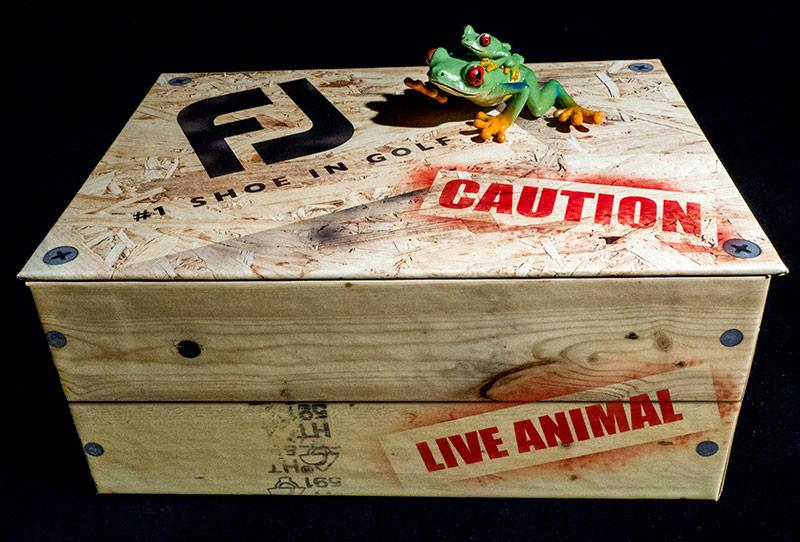 FootJoy Frog