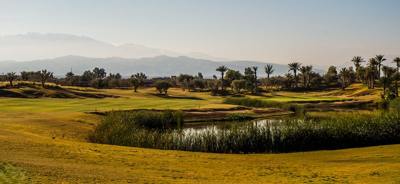 royal_palm_golf_club_marrakech_04